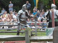 Тульская область: военно-исторический фестиваль на Куликовом поле