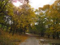 Хельсинки: юбилейный поход по природной тропе в парке